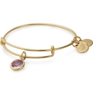 Alex and Ani Light Amethyst June Gold Bangle -front