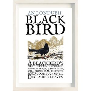 The Ireland Posters Store Birds of Ireland Blackbird Frame