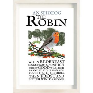 The Ireland Posters Store Birds of Ireland Robin Frame