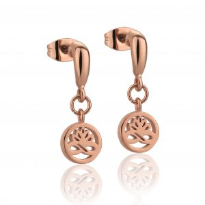 Newbridge Rose Gold Plated Stud Earrings Clear