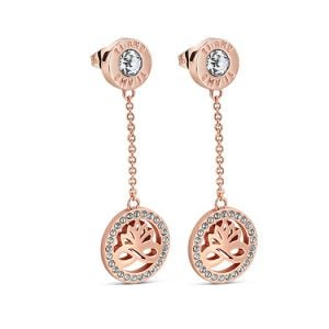 Newbridge Rose Gold Clear Stones Earrings
