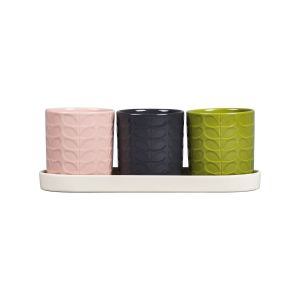 Orla Kiely Set of 3 Herb Pots in Ceramic Tray