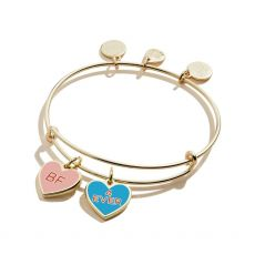 Alex and Ani Best Friends Duo Charm Gold Bangle
