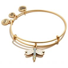 Alex and Ani Dragonfly Gold Bangle