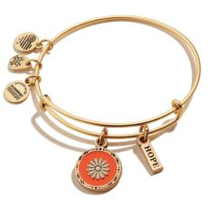 Alex and Ani Hope Mantra Duo Gold Bangle