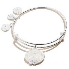 Alex and Ani Love Makes Us Family Silver Bangle