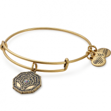 Alex and Ani Bridesmaid Gold Bangle