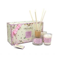 Celtic Candles Pink Grapefruit & Champagne Mini Gift Set