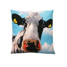 Eoin O'Connor Tinahely Girl Cushion