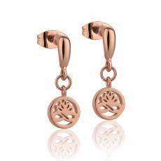Newbridge Rose Gold Plated Stud Earrings Clear