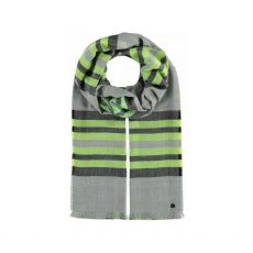 Fraas Plaid Check Green Stripe Scarf