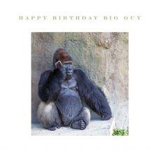 Happy Birthday Big Guy Gorilla card