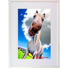 Eoin O' Connor My High Horse Large Frame