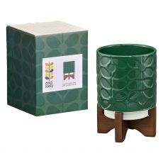 Orla Kiely Sixties Stem Jade Plant Pot With Box