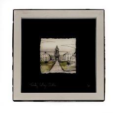 Stephen Farnan Small Frame Trinity College Colour
