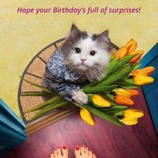 Full of Surprises Birthday Card