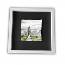 Stephen Farnan Small Frame Trinity College Colour