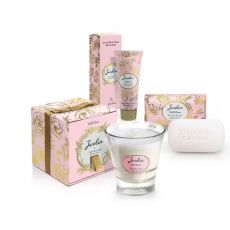 Tipperary Crystal Jardin Wild Roses Gift Bag