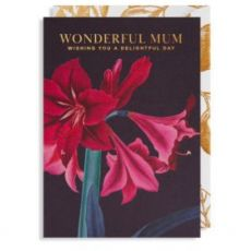 Wonderful Mum Mothers Day Card